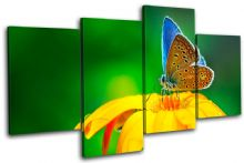 Butterfly Flowers Animals - 13-1157(00B)-MP04-LO
